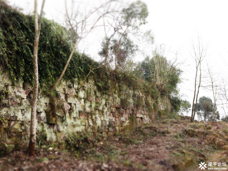 寨门寨墙 (1).JPG