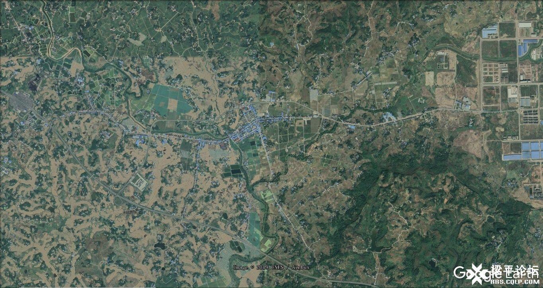 仁贤镇场镇及周边 卫星影像 2.jpg